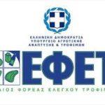 ΕΦΕΤ (2)